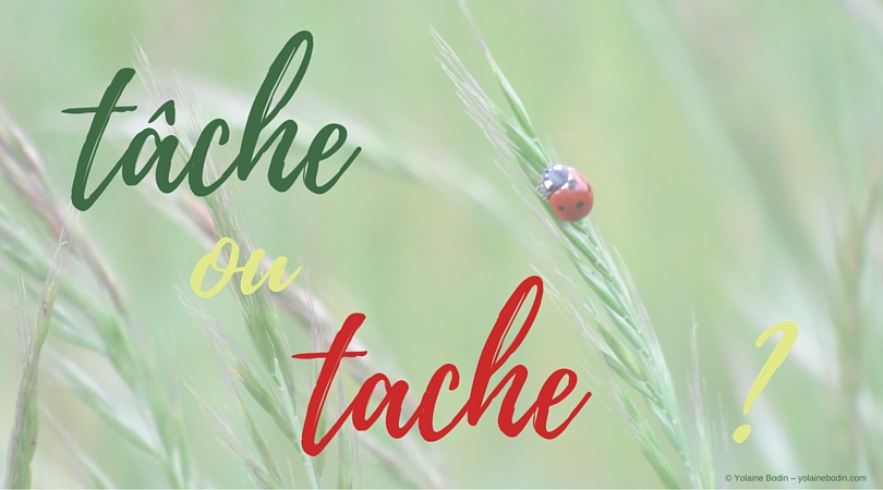 Tâche and tache : stop the confusion between these 2 French words