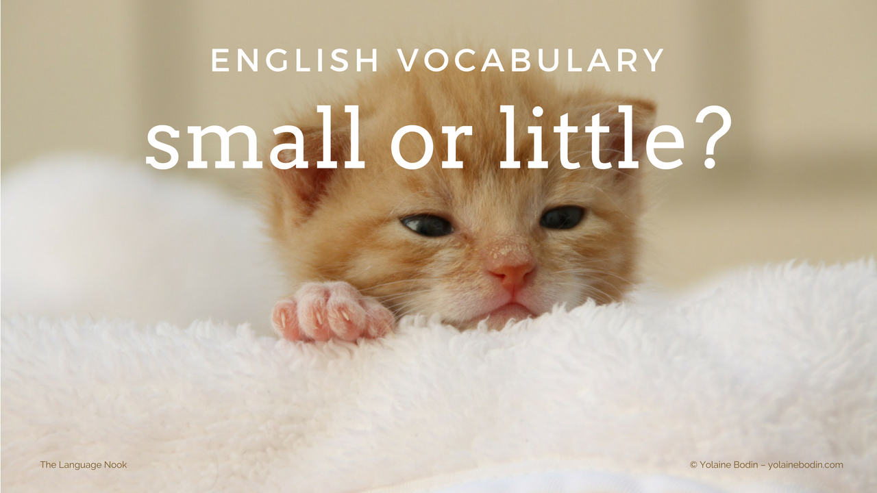small or little: what is the difference?