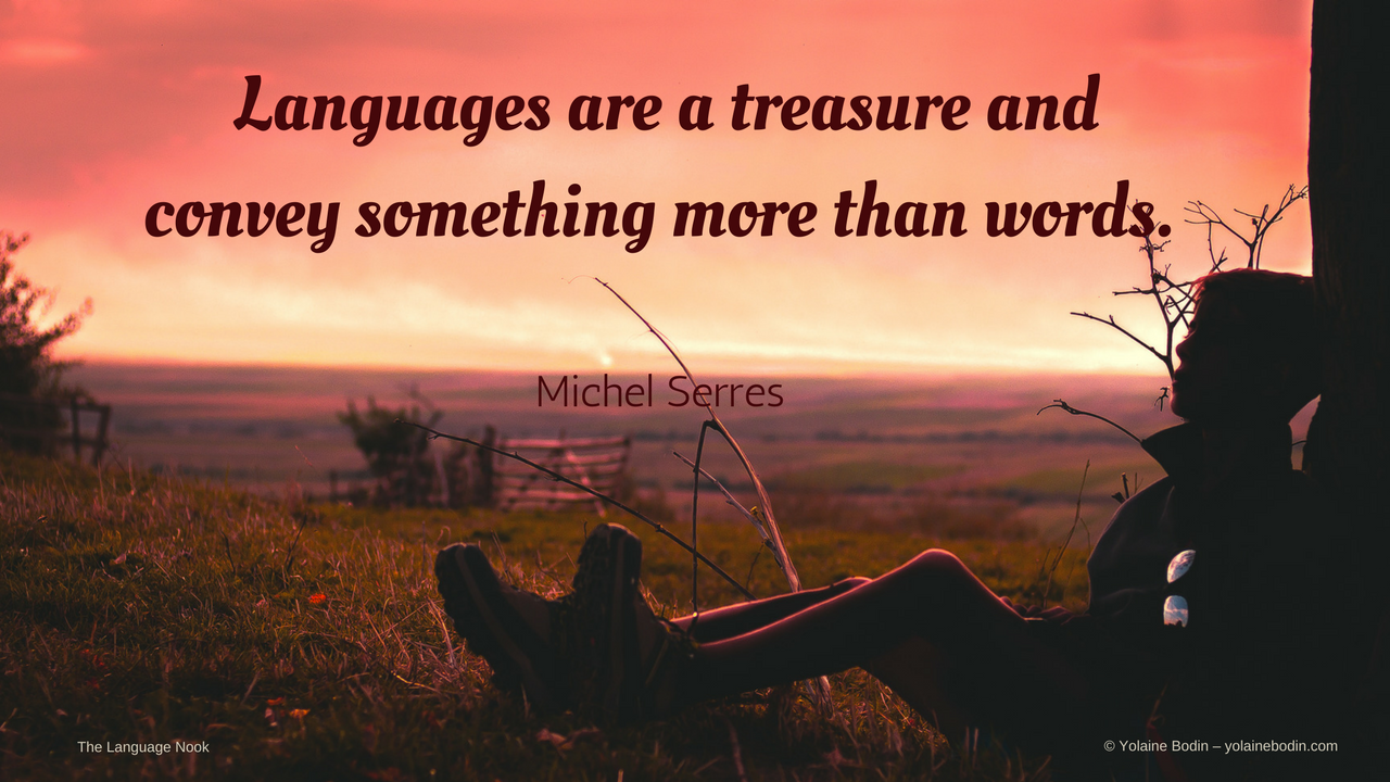 Quote about languages: Languages are a treasure and convey something more than words - Michel Serres