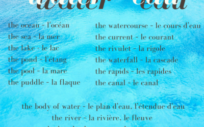 From Puddle to Ocean: French Words about Water