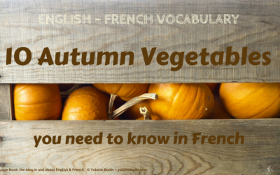 10 Autumn Vegetables you need to know in French