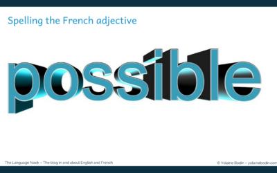 French spelling: le plus, le moins de choses possible or possibles?