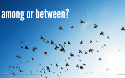 Among and Between: What is the Difference?