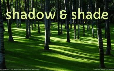 Shadow or Shade?